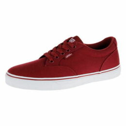 Vans Winston Skate Shoes Mens