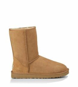 UGG Classic Short Boot Mens Boots Chestnut 13