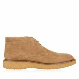 Tods Suede Desert Boots