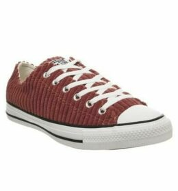 Converse All Star Low BACK ALLEY BRINK WHITE CORD