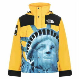 Supreme The North Face Statue Of Liberty Parka
